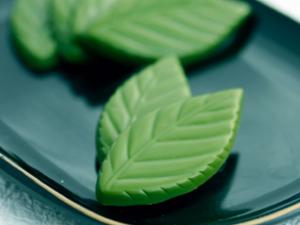 京都しょこら抹茶